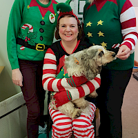 Alzheimer's Elf Day